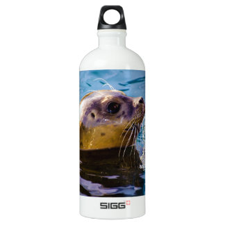 LET'S HAVE SOME SEAL FUN! WATER BOTTLE