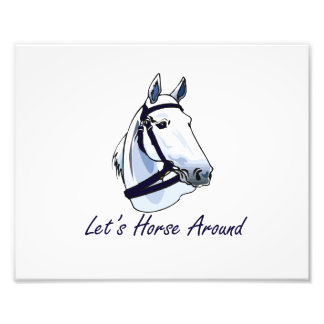 Lets Horse Around Arabian Blue Halter Photo Art