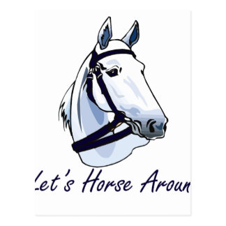 Lets Horse Around Arabian Blue Halter Postcard