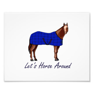 Lets Horse Around Brown w Blue Blanket Photograph