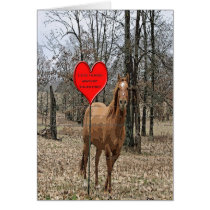 Lets Horse Around Valentine Card