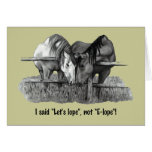 """Let's Lope, not Elope"": Funny: Horses: Couple Cards"