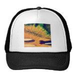 Lets paint! mesh hats