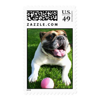 lets play ball Lucy stamps