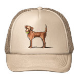 Lets Play Chessie Hat