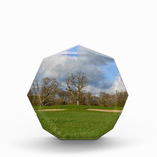 Let's Play Golf Acrylic Award