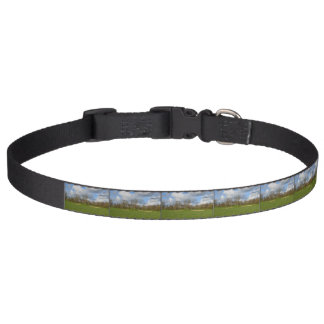 Let's Play Golf Pet Collar