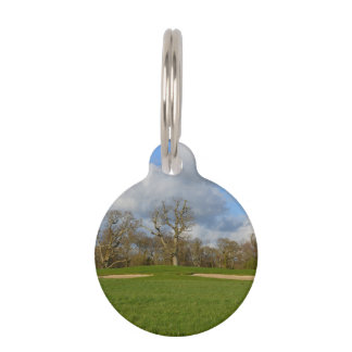 Let's Play Golf Pet Name Tag