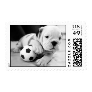 """Let's Play Soccer"" English Bulldog Postage Stamp"