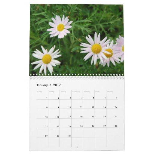 Let's SEE! Calendar