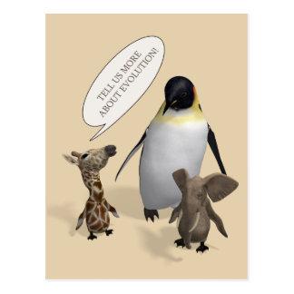 Let's Talk About Evolution Postcard