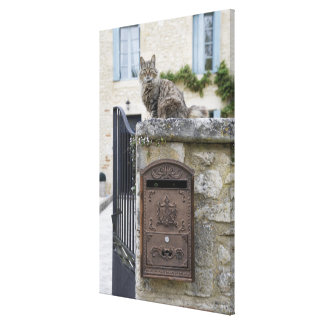 Letter Box and Cat on the Wall, Lot et Garonne, Canvas Print