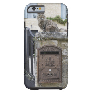 Letter Box and Cat on the Wall, Lot et Garonne, Tough iPhone 6 Case