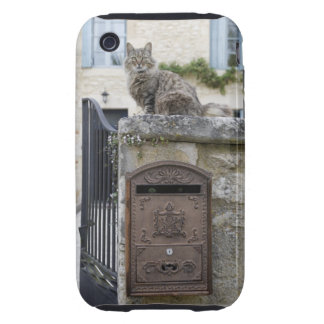 Letter Box and Cat on the Wall, Lot et Garonne, Tough iPhone 3 Covers