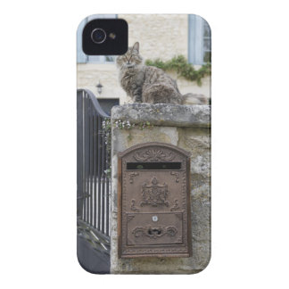 Letter Box and Cat on the Wall, Lot et Garonne, iPhone 4 Case-Mate Cases