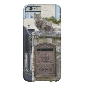 Letter Box and Cat on the Wall, Lot et Garonne, Barely There iPhone 6 Case