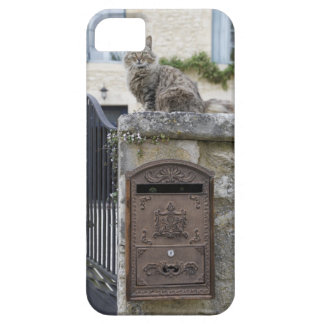 Letter Box and Cat on the Wall, Lot et Garonne, iPhone 5 Case
