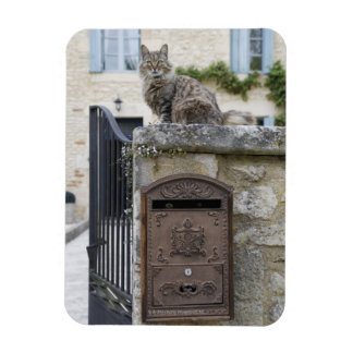 Letter Box and Cat on the Wall, Lot et Garonne, Magnet