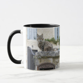 Letter Box and Cat on the Wall, Lot et Garonne, Mug