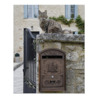 Letter Box and Cat on the Wall, Lot et Garonne, Poster