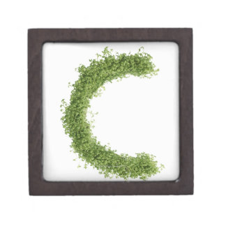 Letter 'C' in cress on white background, Jewelry Box