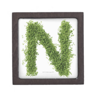 Letter 'N' in cress on white background, Gift Box