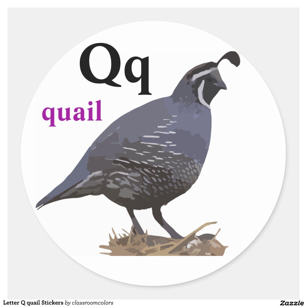 Q Is For Quail Letter Q quail Stickers