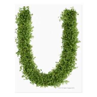 Letter 'U' in cress on white background, Postcard