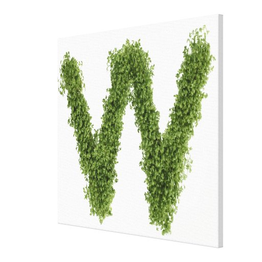Letter 'W' in cress on white background, Canvas Print