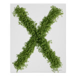 Letter 'X' in cress on white background, Poster