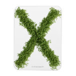 Letter 'X' in cress on white background, Rectangular Magnets