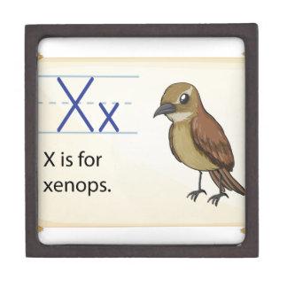 Letter X Premium Trinket Boxes