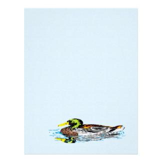 Letterhead  /A Duck design