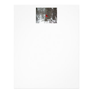 letterhead with photo of male cardinal