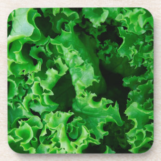 Lettuce Close Up Print - Weird Unique Gift Coaster
