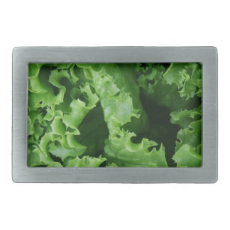 Lettuce Close Up Print - Weird Unique Gift Rectangular Belt Buckle