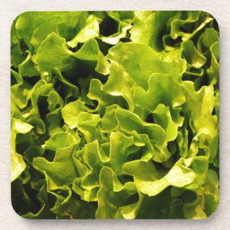 Lettuce Beverage Coaster