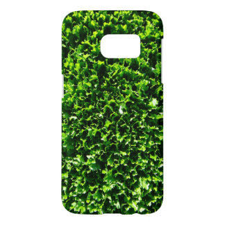 Lettuce Field Photo case