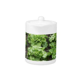 Lettuce Garden Teapot