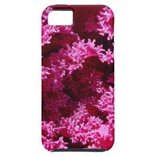 Lettuce iPhone SE/5/5s Case