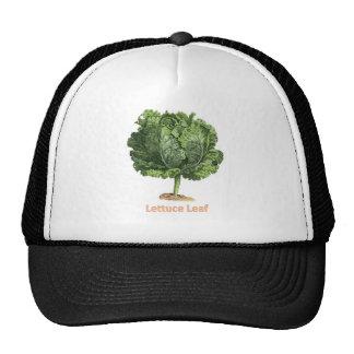 """""""Lettuce Leaf"""" Vintage lettuce image Mesh Hats"""