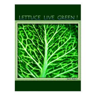LETTUCE LIVE GREEN POSTCARD