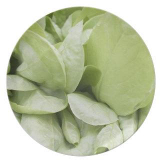 lettuce Plate
