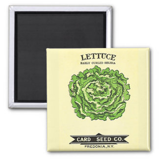 Lettuce Seeds Card Seed Company Imán Cuadrado
