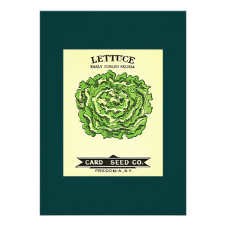 Lettuce Seeds Card Seed Company