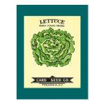 Lettuce Seeds Card Seed Company Postcard