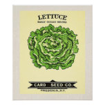 Lettuce Seeds Card Seed Company Posters