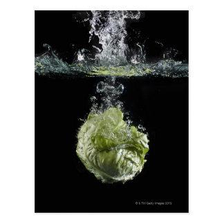 Lettuce splashing in water postcard