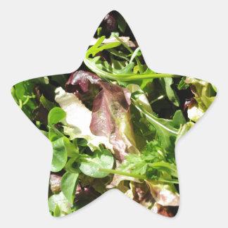 Lettuce Star Sticker