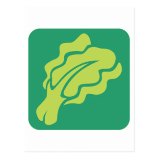 Lettuce Vegetable Icon Postcard
